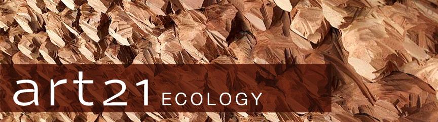 art 21 : ecology banner
